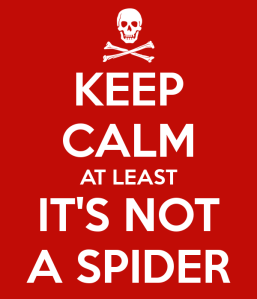 keep-calm-at-least-it-s-not-a-spider